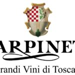 Logo Carpineto
